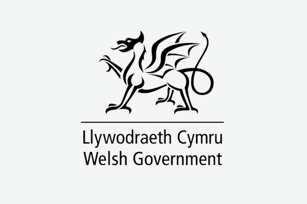 Welsh Government Partner Logo